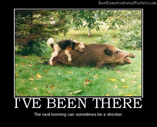 ive-been-there-dog-best-demotivational-posters