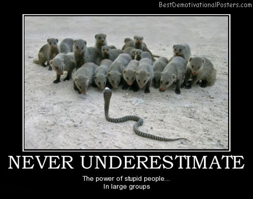 never-underestimate-never-underestimate-stupid-people-best-demotivational-posters