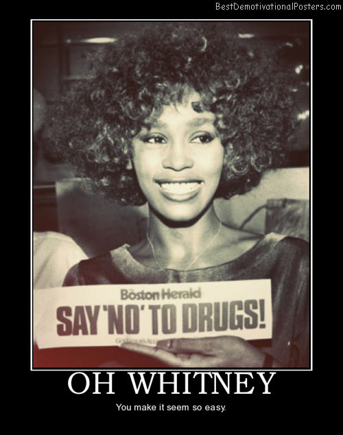 oh-whitney-houston-best-demotivational-posters