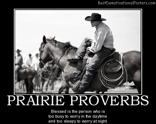 prairie-proverbs-proverbs-wisdom-worry-sleepy-quote-best-demotivational-posters