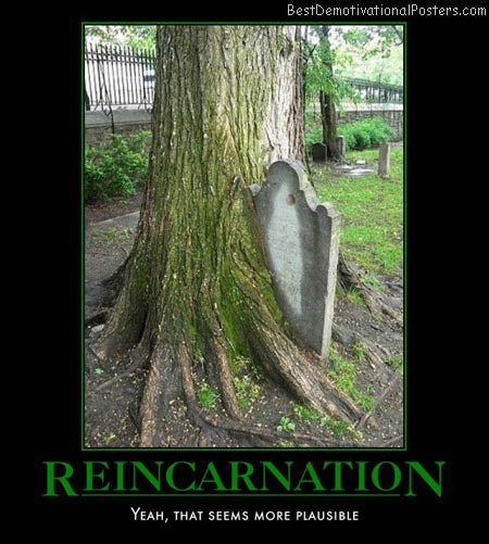reincarnation-grave-tree-cemetery-best-demotivational-posters