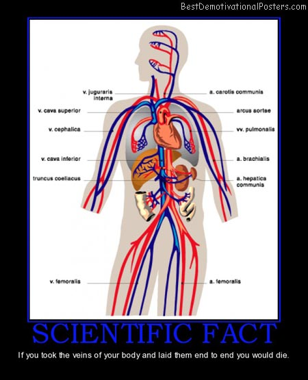 scientific-fact-veins-all-die-best-demotivational-posters