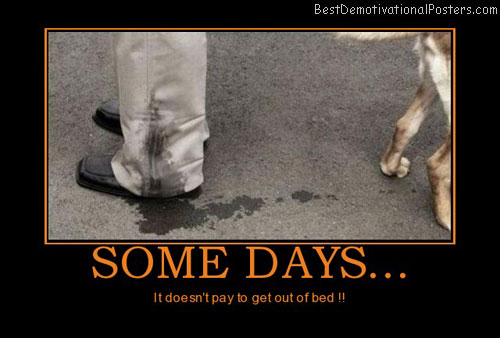 some-days-bed-dog-leak-leg-day-best-demotivational-posters