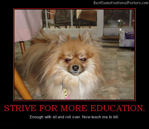 strive-for-more-education-redeye-best-demotivational-posters