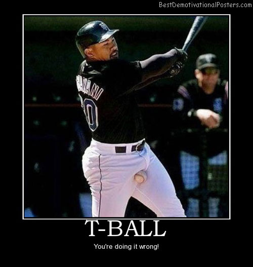 t-ball-baseball-nuts-sports-best-demotivational-posters
