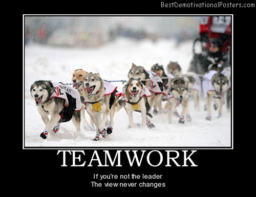 teamwork-dogs-sports-leadership-teamwork-best-demotivational-posters