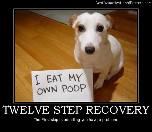 twelve-step-recovery-best-demotivational-posters