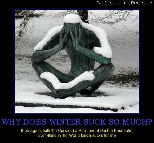 why-does-winter-suck-so-much-facepalm-winter-sucks-statue-best-demotivational-posters