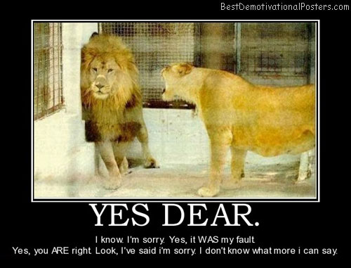 yes-dear-lion-lioness-best-demotivational-posters