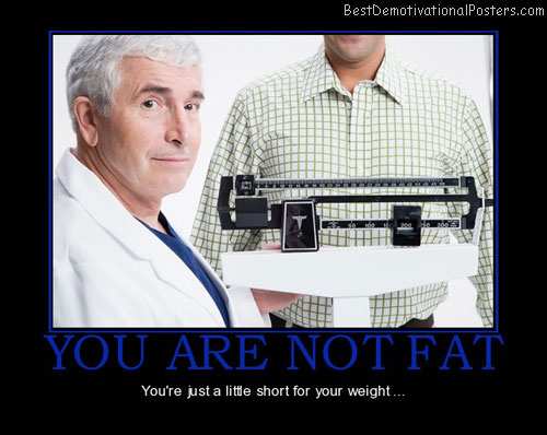 you-are-not-fat-not-fat-short-for-weight-best-demotivational-posters