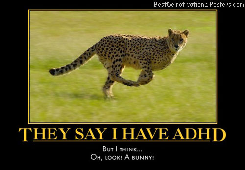 adhd-ocelot-distracted-humor-best-demotivational-posters