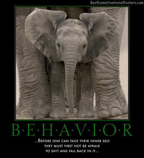 behavior-elephant-baby-best-demotivational-posters
