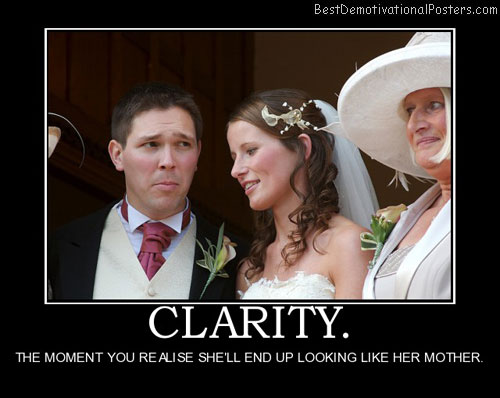 clarity-mother-in-law-wife-best-demotivational-posters