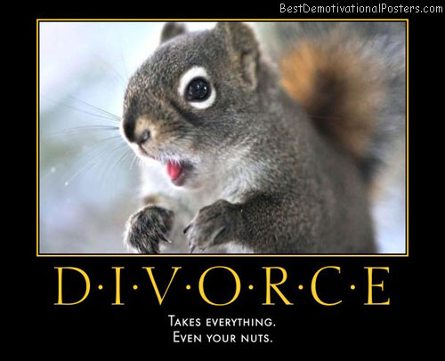 divorce-takes-squirrel-nuts-best-demotivational-posters