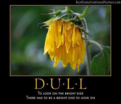 dull-look-bright-side-best-demotivational-posters