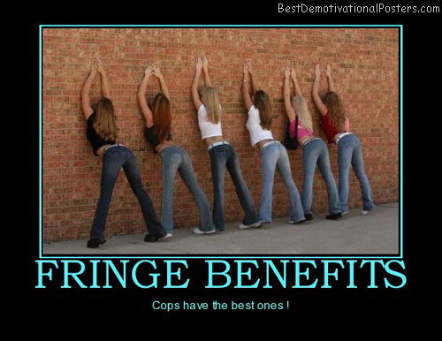 cops-fringe-benefits-frisk-babes-best-demotivational-posters