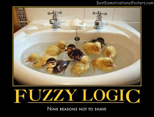 fuzzy-logic-nine-ducklings-humor-best-demotivational-posters
