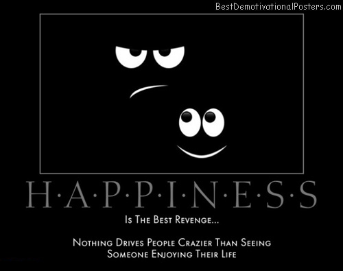 happiness-revenge-crazy-enjoy-live-best-demotivational-posters
