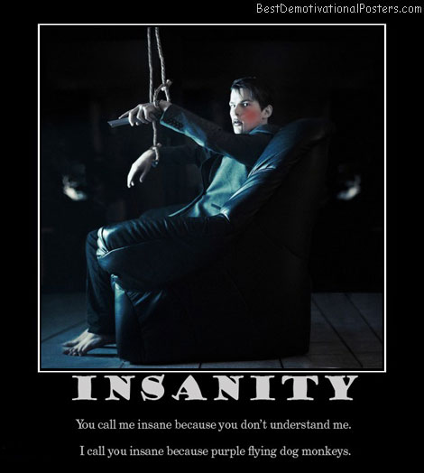 insanity-insane-crazy-monkey-best-demotivational-posters