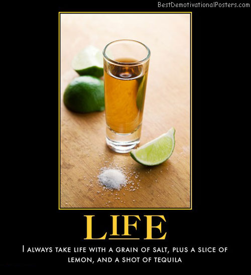 life-cheers-best-demotivational-posters