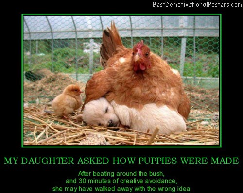 my-daughter-asked-how-puppies-were-made-best-demotivational-posters