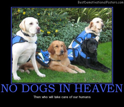 no-dogs-in-heaven-who-best-demotivational-posters