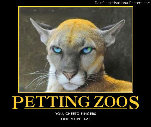 petting-zoo-cheeto-head-puma-best-demotivational-posters
