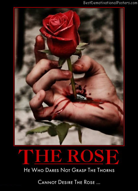 red-rose-dare-grasp-thorn-desire-best-demotivational-posters