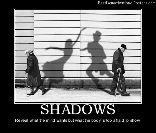 What Shadows Can Reveal?
