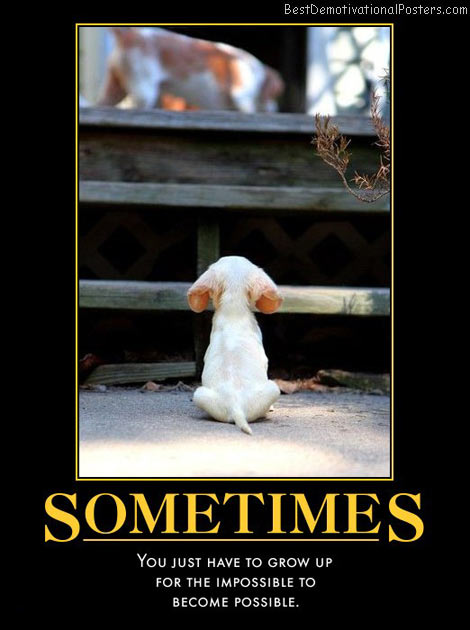 sometimes-growing-up-best-demotivational-posters