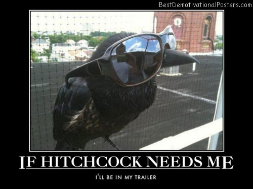 hitchcock-crow-the-birds-set-best-demotivational-posters