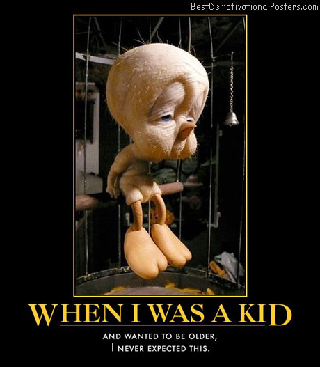 when-i-was-a-kid-never-expected-this-humor-best-demotivational-posters