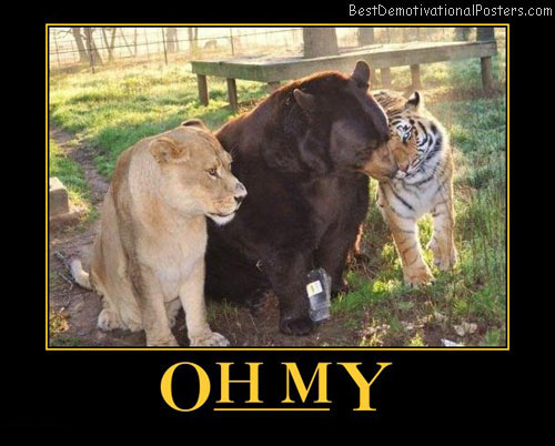 lions-and-tigers-and-bears-best-demotivational-posters