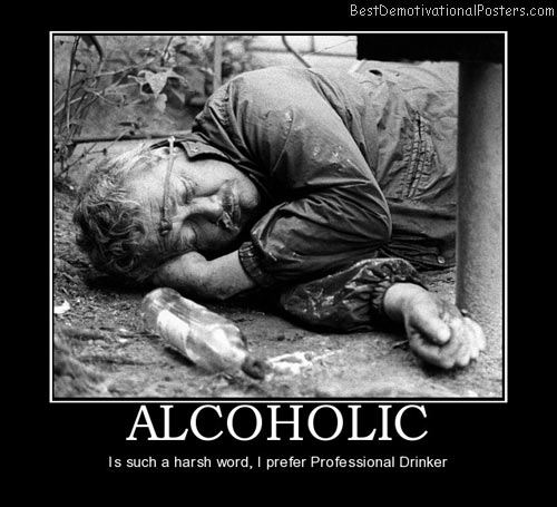 alcoholic-harsh-prefer-professional-drinker-best-demotivational-posters