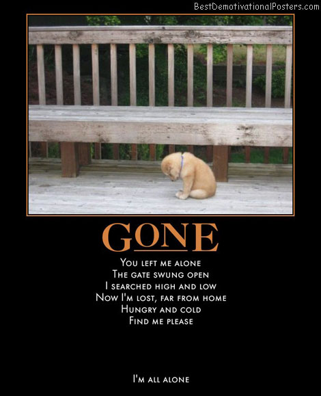 alone-in-the-world-puppy-best-demotivational-posters