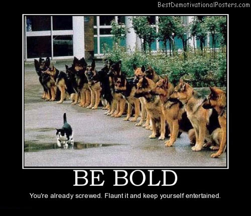 Mira Auto Sales >> Dogs Demotivational Posters & Images