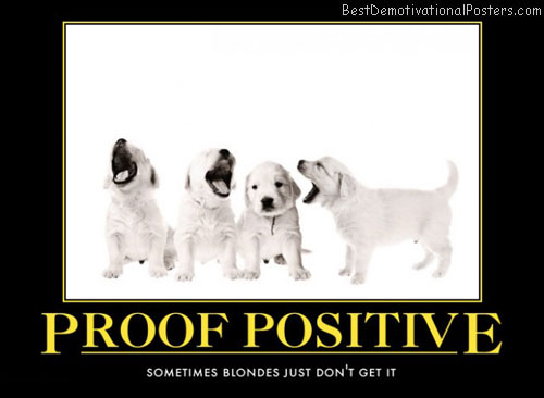 blonde-wisdom-joke-yellow-puppy-best-demotivational-posters