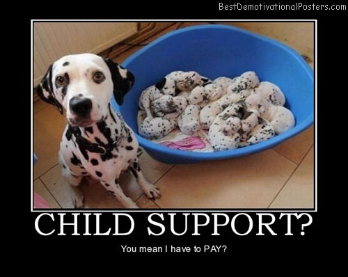 child-support-dogs-puppies-best-demotivational-posters