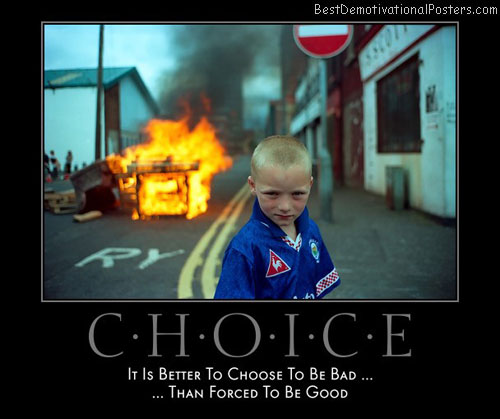 choice-better-bad-forced-good-best-demotivational-posters