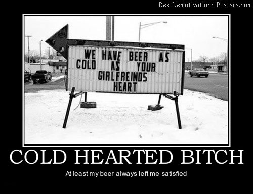 cold-hearted-bitch-left-satisfied-best-demotivational-posters