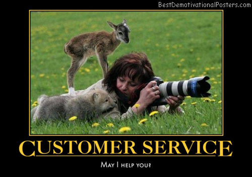 customer-service-baby-animals-curiosity-humor-best-demotivational-posters