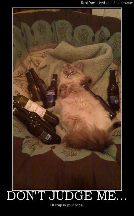 dont-judge-me-cat-best-demotivational-posters