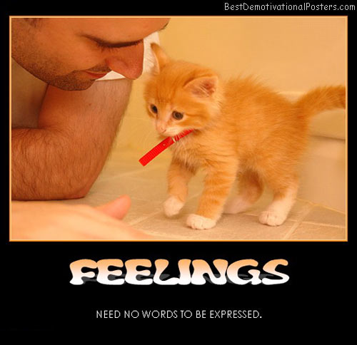 feelings-need-no-words-best-demotivational-posters