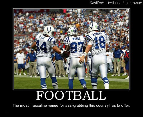 football-superbowl-best-demotivational-posters