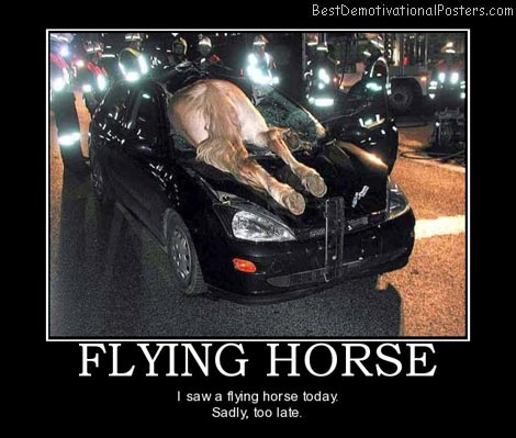 I Saw a Flying Horse