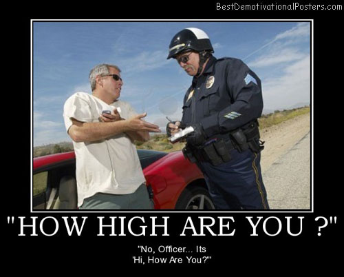 How High Are You ?