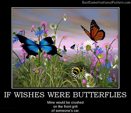 if-wishes-were-butterflies-best-demotivational-posters