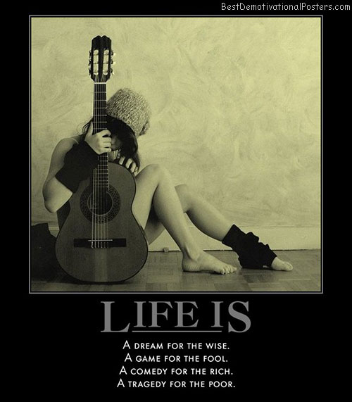 life-is-wise-fool-rich-poor-best-demotivational-posters