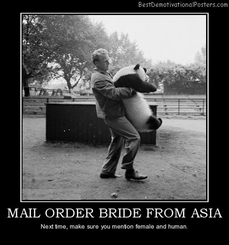 mail-order-bride-from-asia-panda-best-demotivational-posters