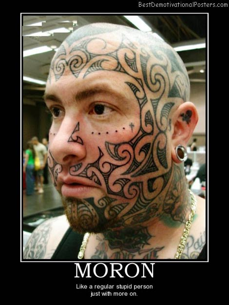moron-best-demotivational-posters